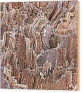 Cardiac Muscle, Sem Wood Print