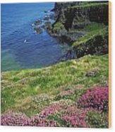 Dunluce Castle, Co Antrim, Ireland Wood Print