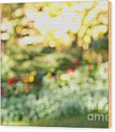 Flower Garden In Sunshine Wood Print by Elena Elisseeva