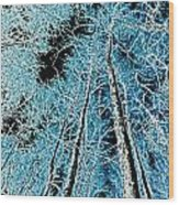 Forest Art Wood Print