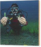 Invasive Seaweed Control Wood Print
