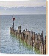 Lake Constance Wood Print