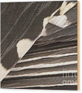Red-bellied Woodpecker Feathers Wood Print