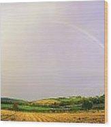 Rock Of Cashel, Co Tipperary, Ireland Wood Print