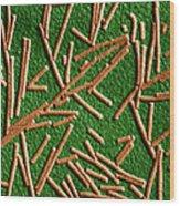 Tobacco Mosaic Virus, Tem Wood Print by Omikron