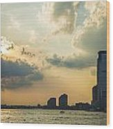View From Battery Park City Wood Print