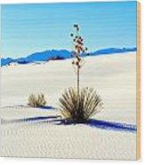 White Sands Wood Print