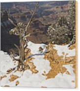 Winter Time On The South Rim Wood Print