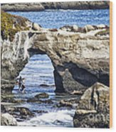 615 Det Rocky Bridge Wood Print