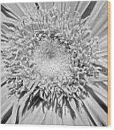 63341c Wood Print