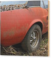 68 Stang Wood Print by Steve McKinzie