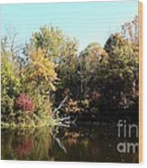 Sugar Ridge State Fish And Wildlife Area Wood Print