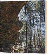 Ash Cave Wood Print