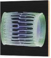 Diatom Alga, Sem Wood Print by Steve Gschmeissner