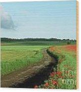 Field Of Poppies. Wood Print