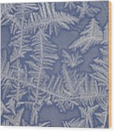 Frost On A Window Wood Print