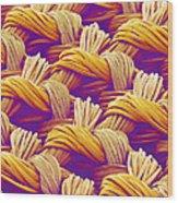 Woven Fabric, Sem Wood Print