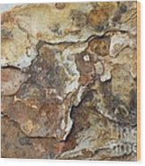 Natures Rock Art Wood Print