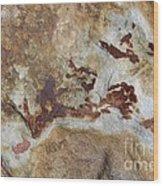 Natures Rock Art Wood Print