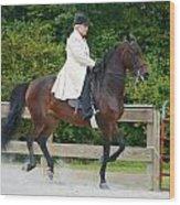 Class 31  Open Saddle Seat Pleasure  Wood Print