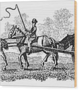Virginia: Tobacco Culture Wood Print