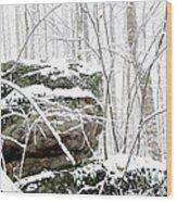 Autumn Snow Monongahela National Forest Wood Print