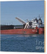 Presque Isle Ship Wood Print