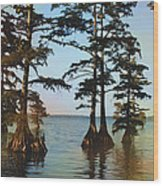 Reelfoot Lake Wood Print