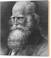 William Cullen Bryant Wood Print