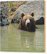 A Bear's Hot Tub Wood Print