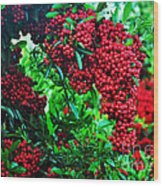 A Berry Merry Christmas Wood Print