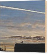 A Bird Outlined Against The Setting Sky At Dover Castle Wood Print