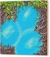 A Birds Eye View Wood Print