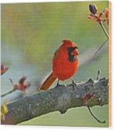 A Bit Red Wood Print