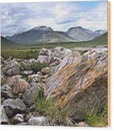 A Boulder Near Loch Garve Wood Print