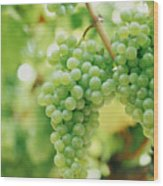A Bunch Of Green Grapes Hanging From The Vine Wood Print by Victoria Pearson