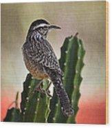 A Cactus Wren  Wood Print