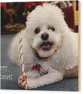 A Candycane For Puppy Wood Print