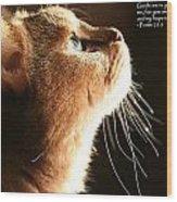 A Cat Prayer Wood Print