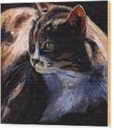 A Cat's Life Wood Print
