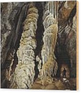 A Caver Is Dwarfed By Giant Calcite Wood Print