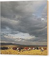 A Cloud-filled Sky Over A Yakima Valley Wood Print by Sisse Brimberg