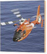 A Coast Guard Hh-65a Dolphin Rescue Wood Print by Stocktrek Images