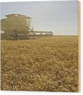 A Combine Harvester Works A Field Wood Print