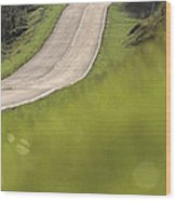 A Country Road In Virginia Wood Print