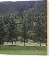A Day At The Park In Vail Wood Print