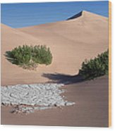 A Death Valley View Wood Print