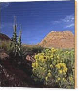 A Desert Landscape With Rock Formations Wood Print