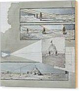 A Diagram Examines Photographs Wood Print by Richard Schlecht