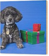 A Dog With Some Gifts Wood Print
